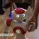 Robots Xavier Oberson